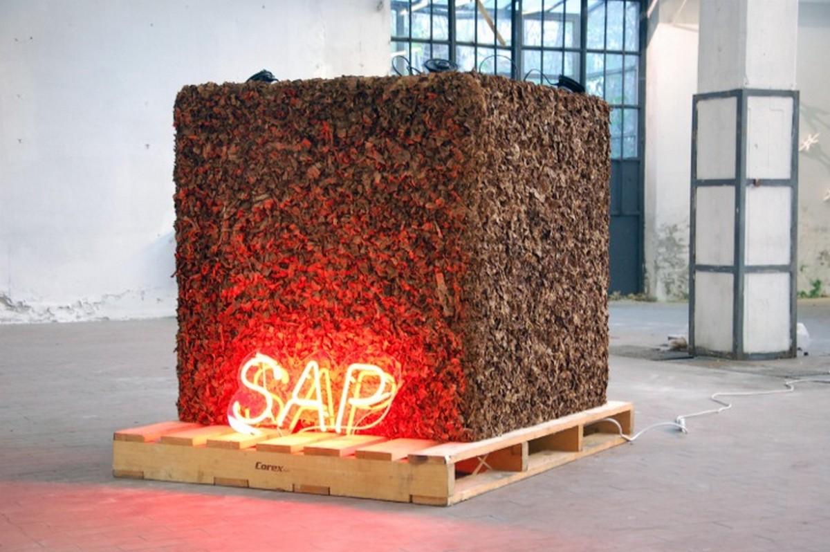 Ciro Vitale, SAP