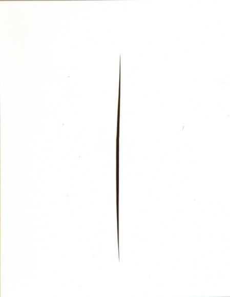 3.17 Lucio Fontana