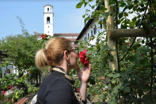 Festival delle Rose di Nova Gorica