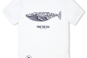North Sails: nuova iniziativa per la salvaguardia degli oceani