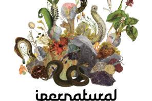 IPERNATURAL 2019 il festival di Centrale Fies